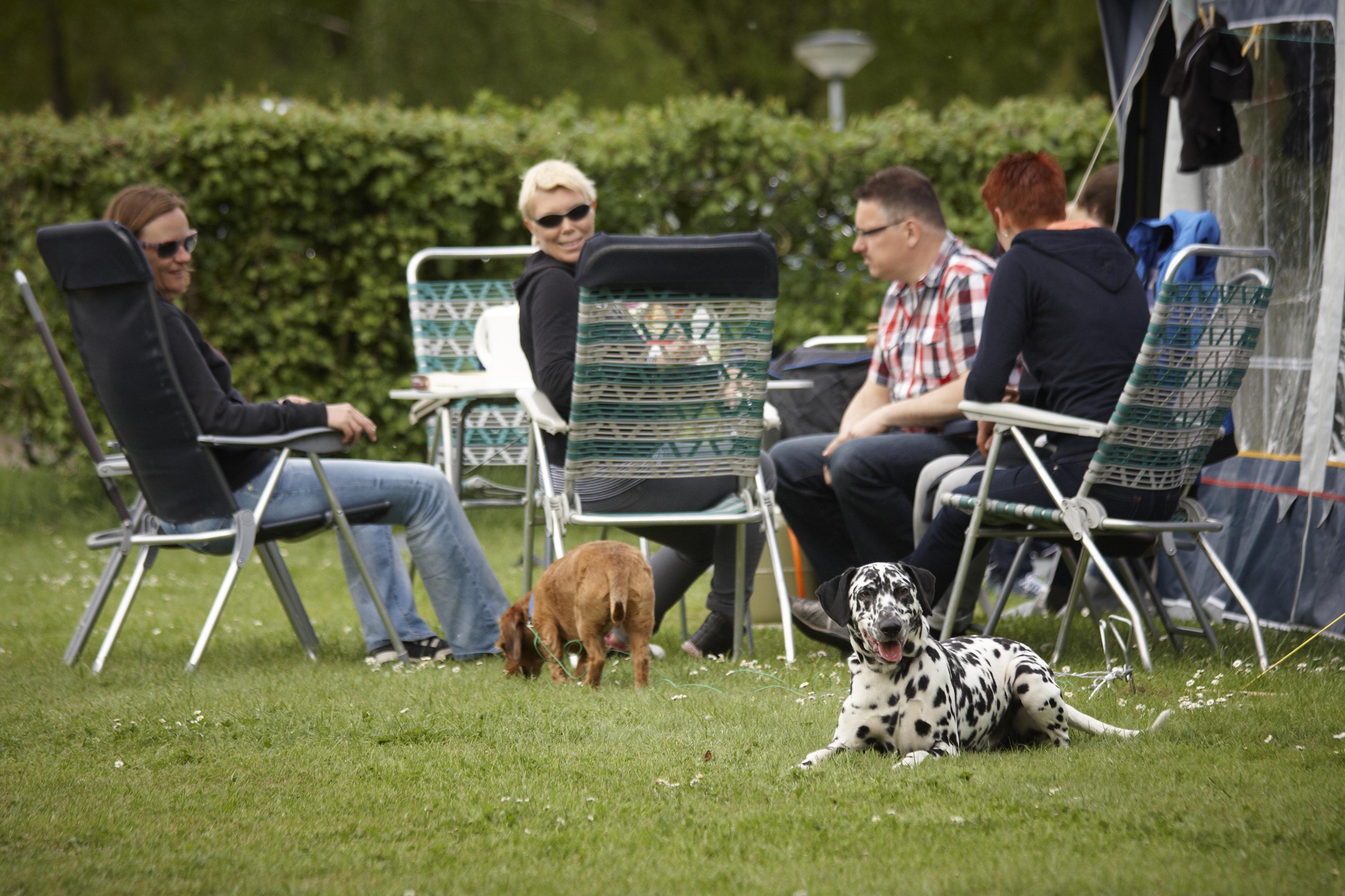 Recreatiepark De Leistert - Komfort mit Haustier